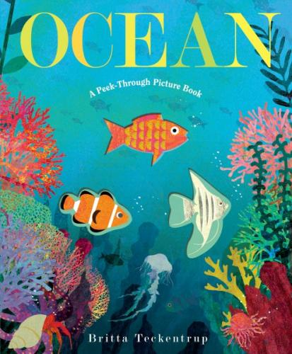 Ocean: A Peek-Through Picture Book Cover Image