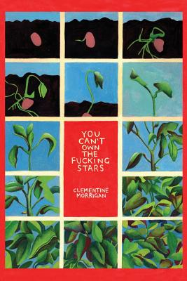 You Can't Own the Fucking Stars: Collected Writings on Trauma, Addiction, Recovery, and Transformation Cover Image