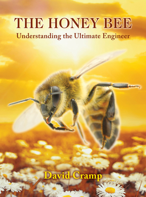 The Honey Bee: Understanding the Ultimate Engineer Cover Image
