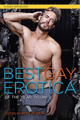 Best Gay Erotica of the Year, Volume 3 (Cleis Anthology #3) Cover Image