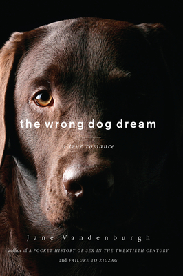 The Wrong Dog Dream Cover