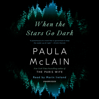 When the Stars Go Dark: A Novel cover