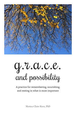 Cover for G.R.A.C.E. and Possibility