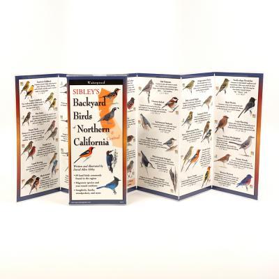 Sibley's Backyard Birds of Northern California Cover Image