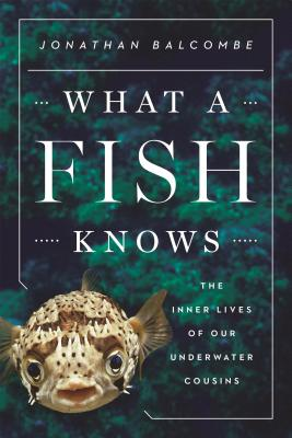 Cover for What a Fish Knows