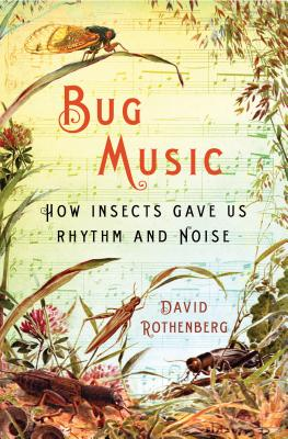 Bug Music Cover