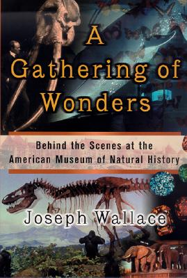A Gathering of Wonders Cover
