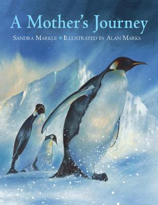 A Mother's Journey Cover