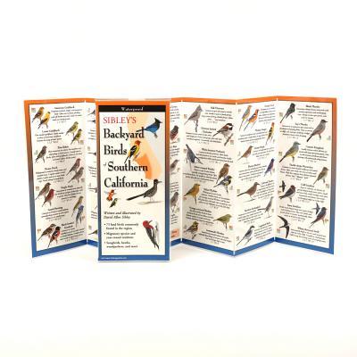 Sibley's Backyard Birds of Southern California Cover Image