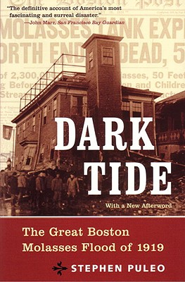 Dark Tide Cover