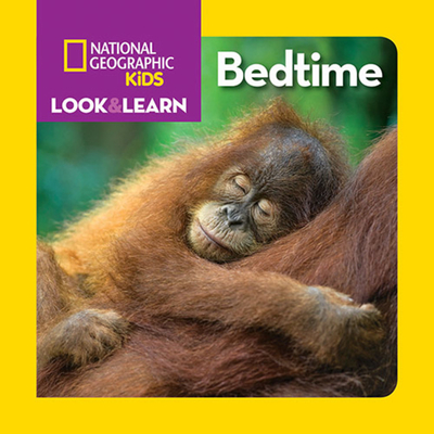 Look & Learn: Bedtime Cover Image