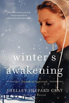 Winter's Awakening (Seasons of Sugarcreek #1) Cover Image