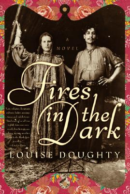 Cover for Fires in the Dark