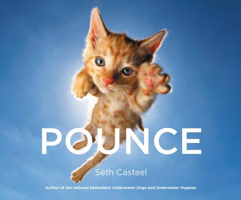 Pounce Cover Image