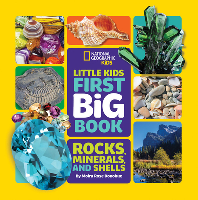 Little Kids First Big Book of Rocks, Minerals & Shells (First Big Books) Cover Image