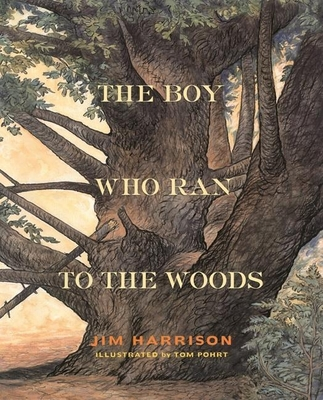 The Boy Who Ran to the Woods Cover