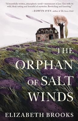 The Orphan of Salt Winds Cover Image