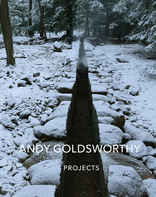 Andy Goldsworthy: Projects Cover Image