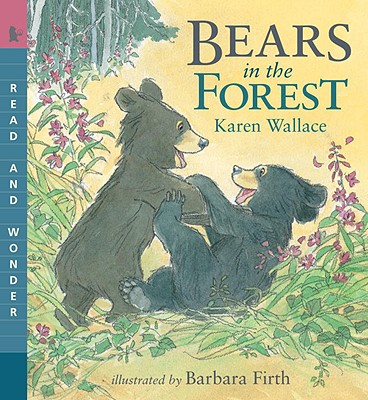 Bears in the Forest Cover