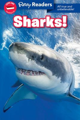 Ripley Readers LEVEL1 Sharks Cover Image