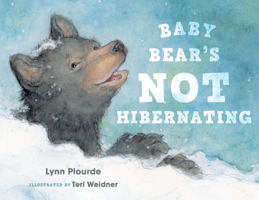 Baby Bear's Not Hibernating Cover Image