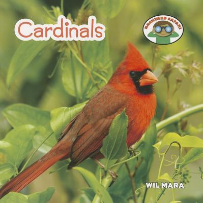 Cardinals (Backyard Safari) Cover Image