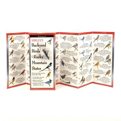Sibley's Backyard Birds of Rocky Mountain States Cover Image