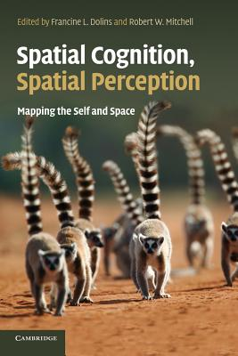 Spatial Cognition, Spatial Perception Cover Image
