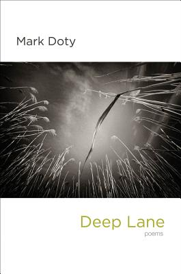 Deep Lane: Poems Cover Image