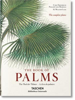 Von Martius. the Book of Palms Cover Image