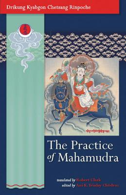 The Practice of Mahamudra Cover