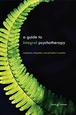 A Guide to Integral Psychotherapy: Complexity, Integration, and Spirituality in Practice (SUNY Series in Integral Theory) Cover Image