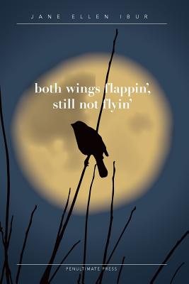 Both Wings Flappin', Still Not Flyin' Cover Image
