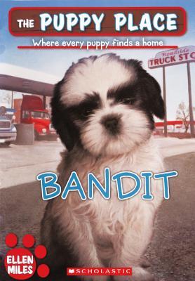 Bandit Cover Image