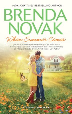 When Summer Comes book cover