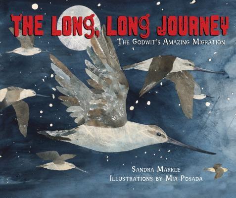 The Long, Long Journey Cover