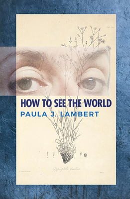 How to See the World: Poems Cover Image