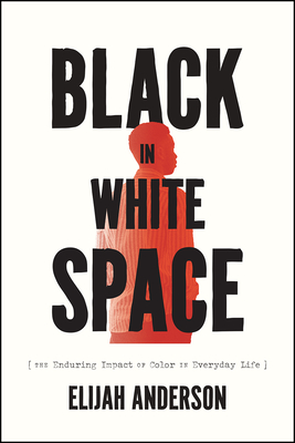 Black in White Space: The Enduring Impact of Color in Everyday Life cover