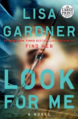 Look for Me (Detective D. D. Warren #10) Cover Image