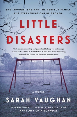 Little Disasters: A Novel Cover Image