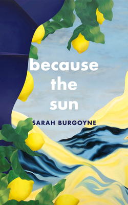 Cover for Because the Sun