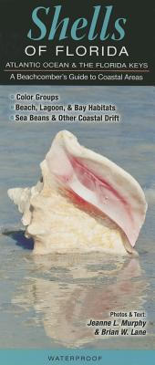 Shells of Florida-Atlantic Ocean & Florida Keys: A Beachcomber's Guide to Coastal Areas Cover Image