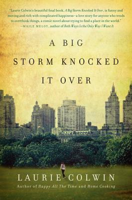A Big Storm Knocked It Over Cover Image