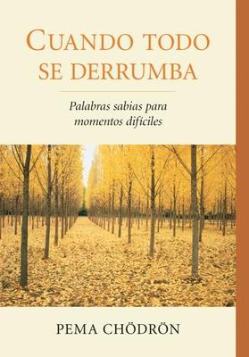 Cuando Todo Se Derrumba (When Things Fall Apart): Palabras Sabias Para Momentos Dificiles Cover Image