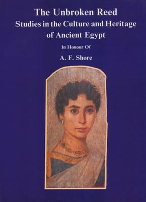 Qasr Ibrim: The Late Mediaeval Period (Excavation Memoir #59) Cover Image