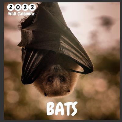 Bats 2022 Wall Calendar: Ofifcial Bats Calendar 2022, 12 Months, Bats Lovers Calendar Cover Image
