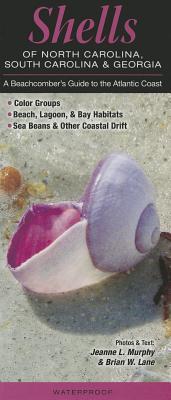 Shells of North Carolina, South Carolina & Georgia: A Beachcomber's Guide to the Atlantic Coast Cover Image