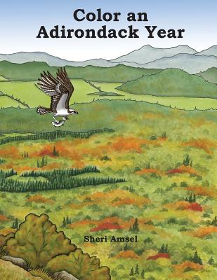 Color an Adirondack Year Cover Image