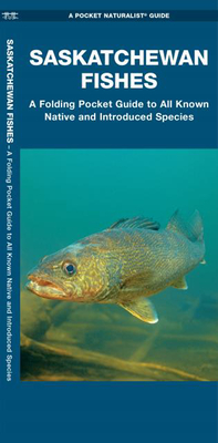 Saskatchewan Fishes: A Folding Pocket Guide to All Known Natuve and Introduced Species Cover Image