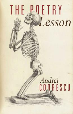 The Poetry Lesson Cover Image